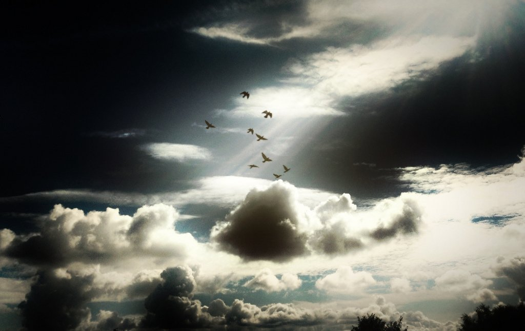 clouds-dove
