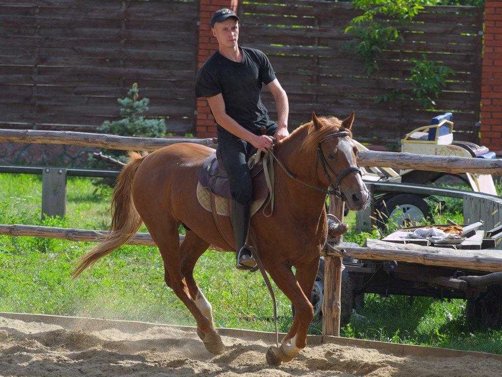 Equestrian - Teen Rehab