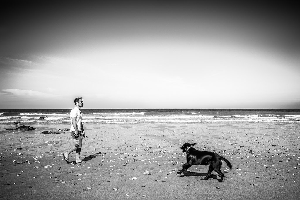 Guy Walking Dog Beach - Teen Rehab