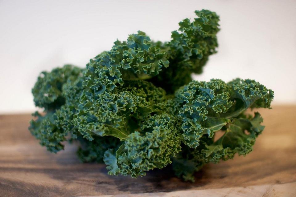 Kale - Teen Rehab