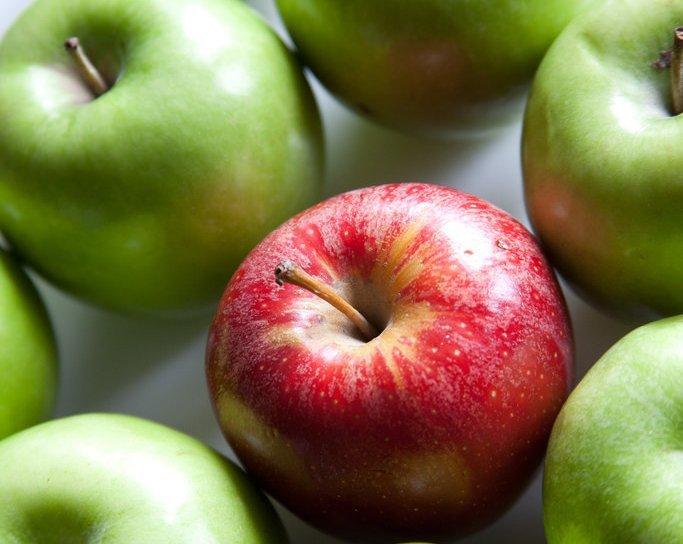 Red Apple - Teen Rehab