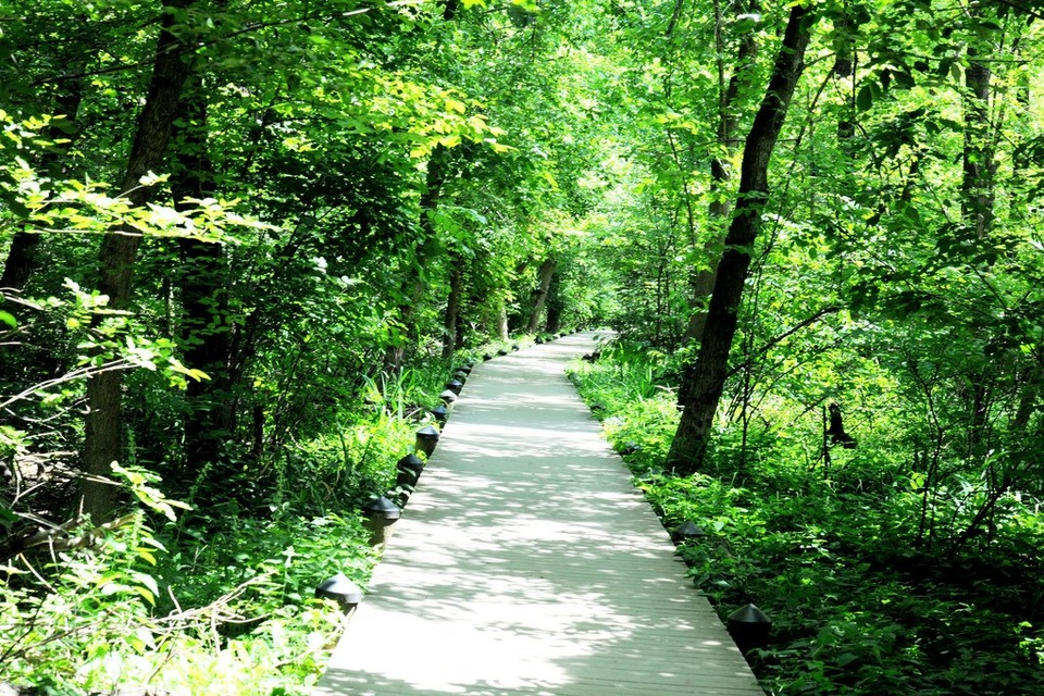 Green Trail - Teen Rehab