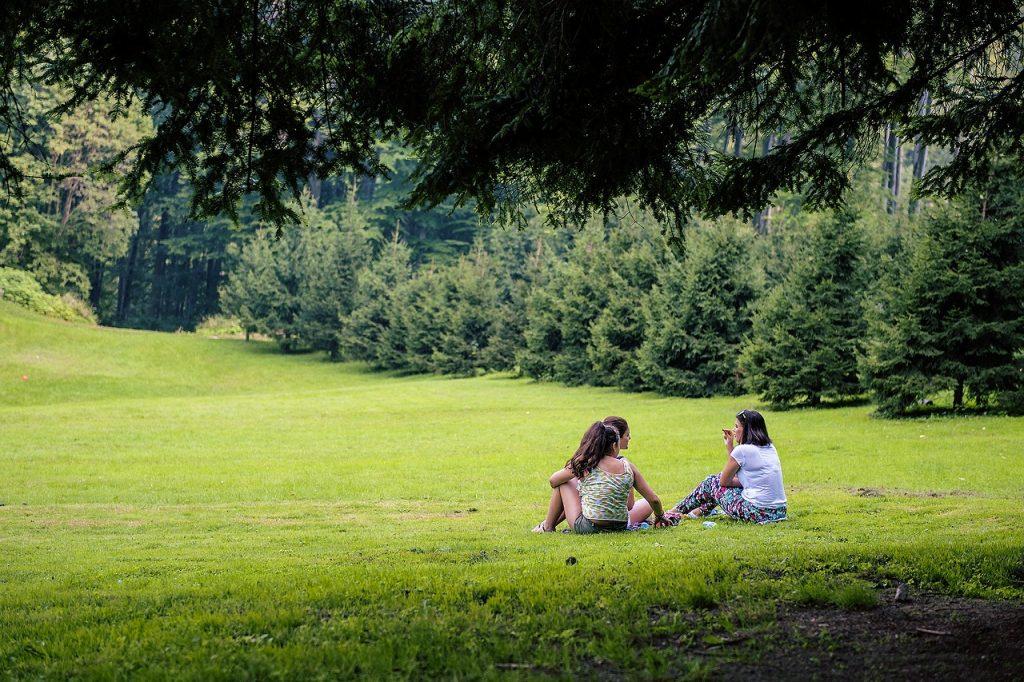picnic-562594_1280