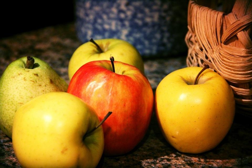 Apples - Teen Rehab