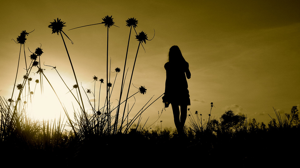 girl silhouette sunset field flowers grass outdoors