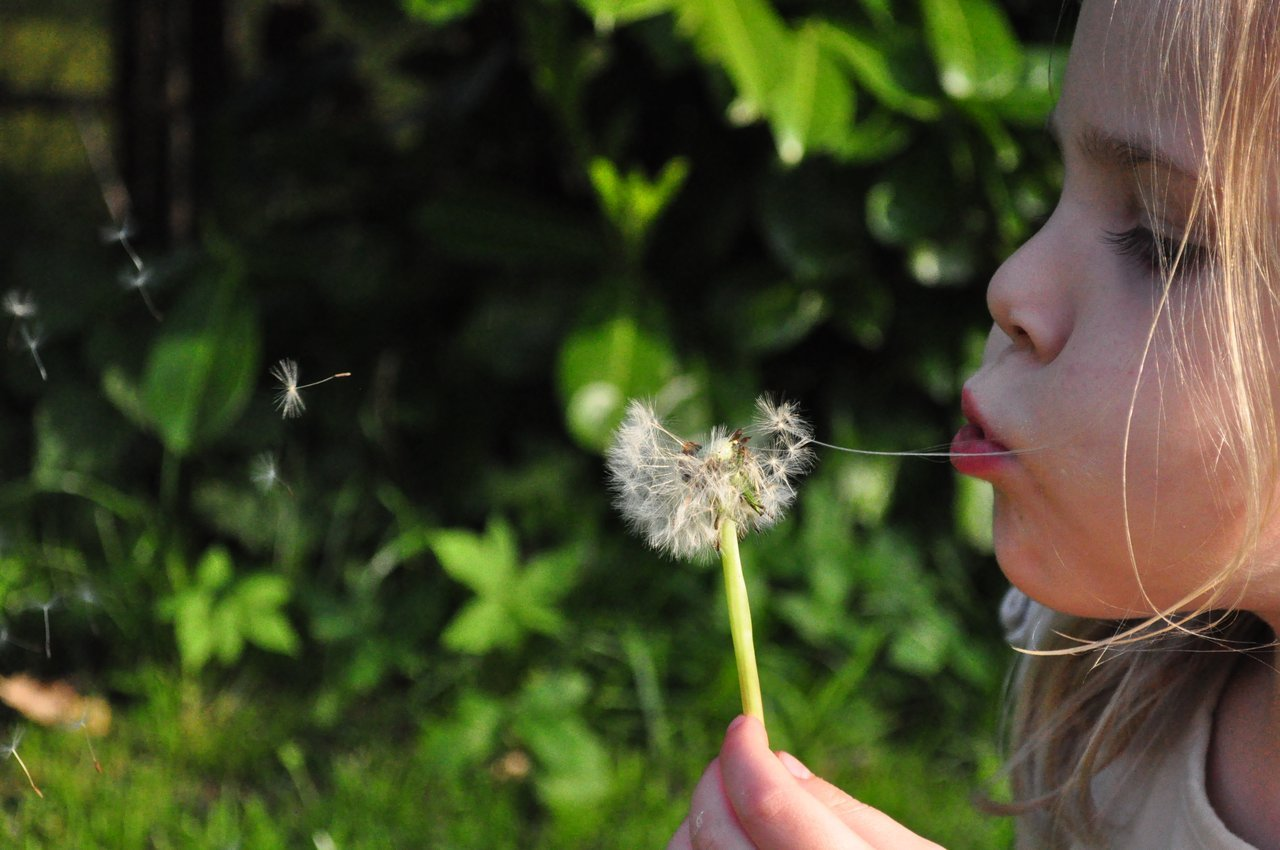 Childhood Trauma Girl Blowing Dandelions