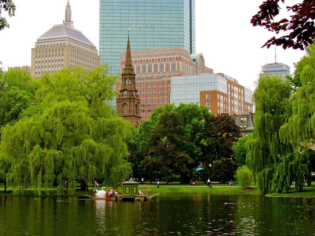 Boston Drug Trends